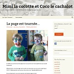 blog parents de jumeaux