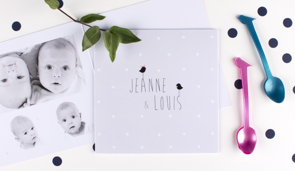 Faire part jumeaux Lovely things