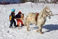 cheval enfants serre chevalier